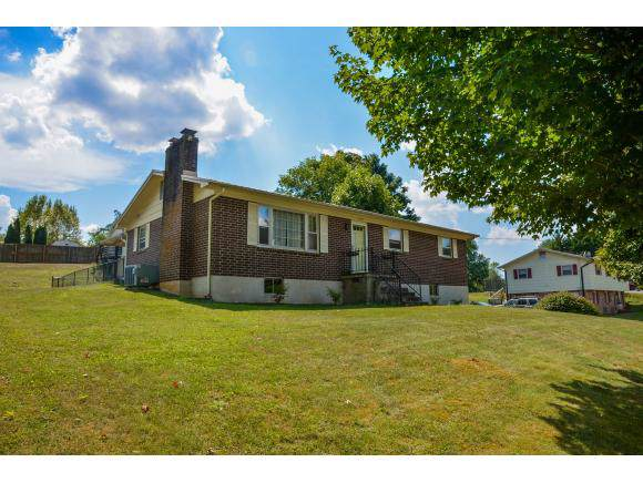 14210 Brynwood Drive, Bristol, VA 24202 (MLS #427395) :: Conservus Real Estate Group
