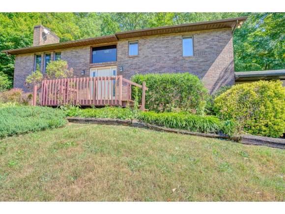 280 Possum Hollow Rd, Gray, TN 37615 (MLS #427427) :: Conservus Real Estate Group
