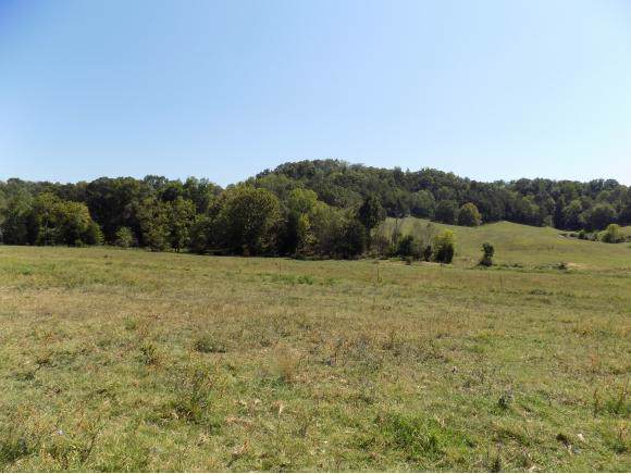128 Phillips Town Road, Bulls Gap, TN 37711 (MLS #427443) :: Highlands Realty, Inc.