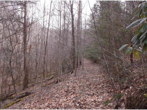 TBD Sciota Rd T-2, Elizabethton, TN 37643 (MLS #427460) :: Bridge Pointe Real Estate