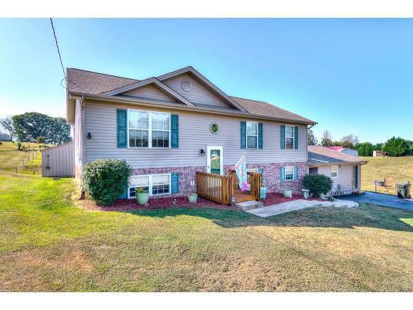 61 Mulberry Bend, Jonesborough, TN 37659 (MLS #427471) :: Conservus Real Estate Group