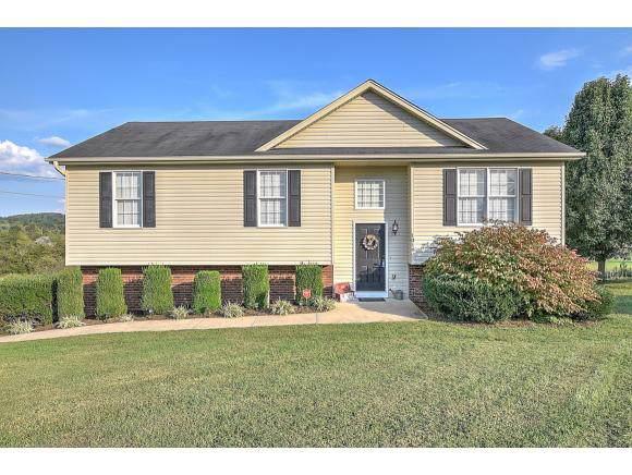 1018 Painter Road, Jonesborough, TN 37659 (MLS #427541) :: Conservus Real Estate Group