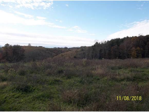 Lot 5 Mt Hope Rd, Mohawk, TN 37810 (MLS #427565) :: Highlands Realty, Inc.