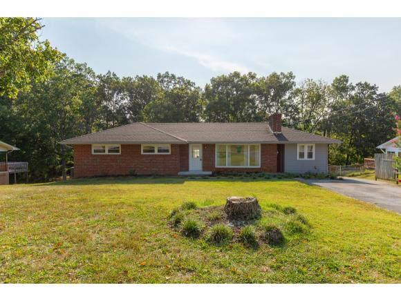 3317 Misty Drive, Kingsport, TN 37660 (MLS #427577) :: Highlands Realty, Inc.