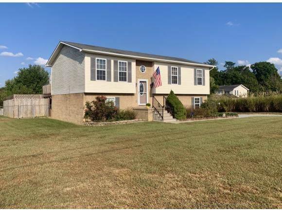 165 Mill Drive, Greeneville, TN 37745 (MLS #427592) :: Conservus Real Estate Group