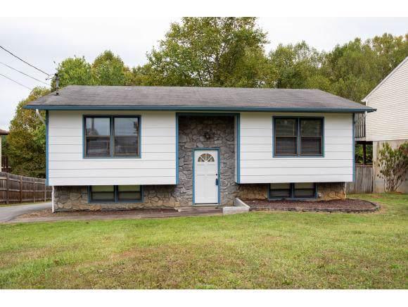 134 Village Lane, Gray, TN 37615 (MLS #427603) :: Conservus Real Estate Group