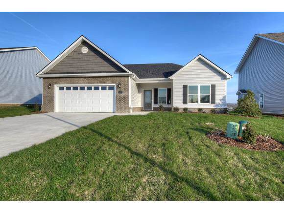 2922 Southbridge Rd, Kingsport, TN 37664 (MLS #427623) :: Conservus Real Estate Group