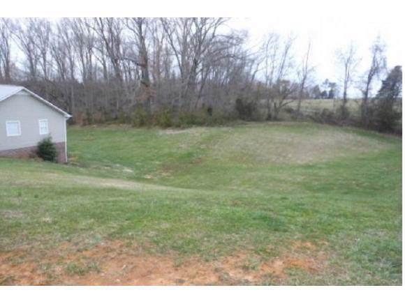 399 Appian Way, Greeneville, TN 37745 (MLS #427629) :: Conservus Real Estate Group