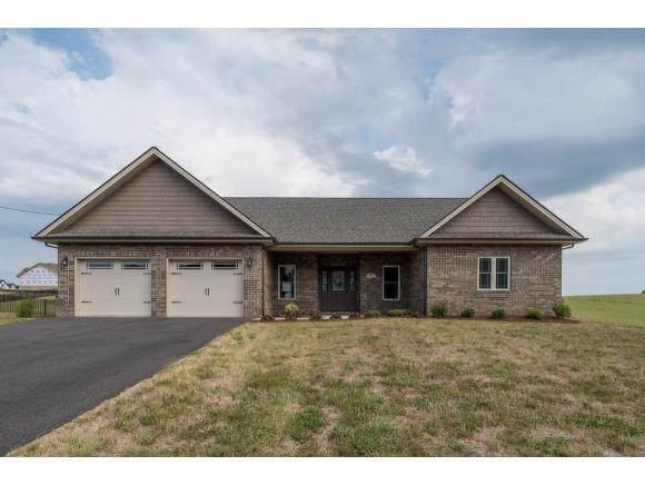 582 Sugar Hollow Road, Telford, TN 37690 (MLS #427646) :: Conservus Real Estate Group