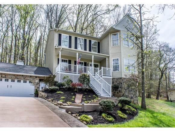 110 Heather Lane, Greeneville, TN 37745 (MLS #427666) :: Conservus Real Estate Group