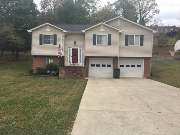 3820 Alderwood Drive, Kingsport, TN 37664 (MLS #427675) :: Conservus Real Estate Group