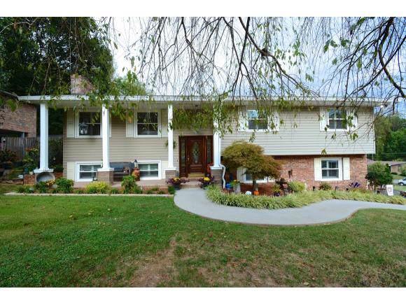 405 Ferncliff Dr, Kingsport, TN 37660 (MLS #427740) :: Conservus Real Estate Group