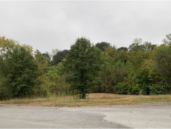 TBD Radcliffe Ave, Kingsport, TN 37664 (MLS #427864) :: Conservus Real Estate Group