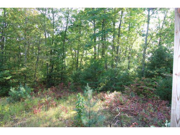 2183 Mining Town Road, Mountain City, TN 37683 (MLS #428112) :: Conservus Real Estate Group