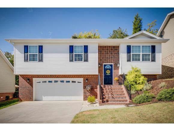 245 Stone Edge Circle, Kingsport, TN 37660 (MLS #428141) :: Conservus Real Estate Group