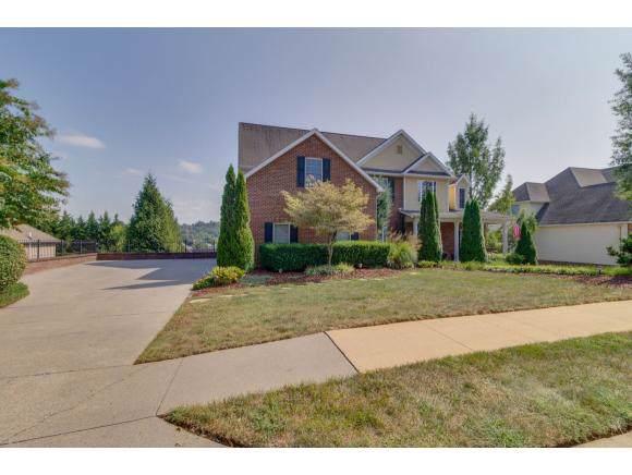 210 Emerald Chase Circle, Johnson City, TN 37615 (MLS #428144) :: The Baxter-Milhorn Group