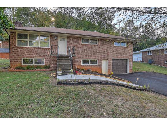 222 Chadwell Rd, Kingsport, TN 37766 (MLS #428169) :: Conservus Real Estate Group