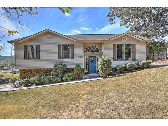 169 Ventor Drive, Weber City, VA 24290 (MLS #428229) :: Conservus Real Estate Group