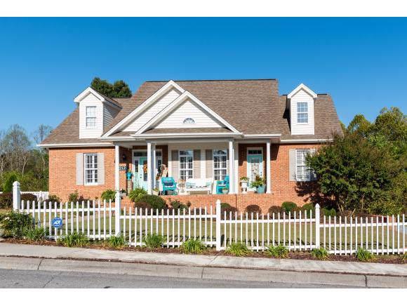 2121 Saint Erics Ct, Kingsport, TN 37660 (MLS #428247) :: Conservus Real Estate Group
