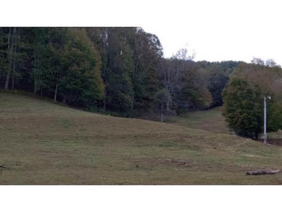TBD Hwy 143, Roan Mountain, TN 37687 (MLS #428492) :: Conservus Real Estate Group