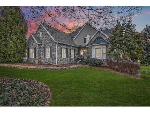 7 Cox Farm Court, Johnson City, TN 37601 (MLS #428493) :: Conservus Real Estate Group