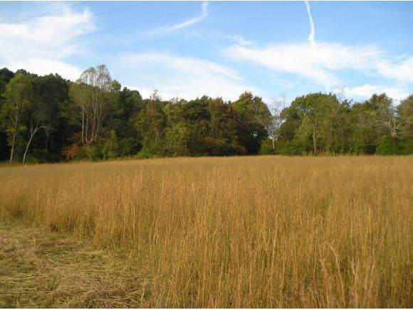00 Ball Orchard Pvt. Dr., Kingsport, TN 37660 (MLS #428505) :: The Baxter-Milhorn Group
