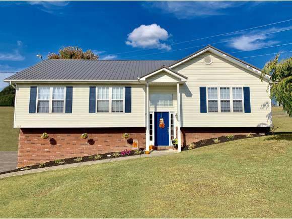 123 Sarahs Way, Jonesborough, TN 37659 (MLS #428534) :: Highlands Realty, Inc.