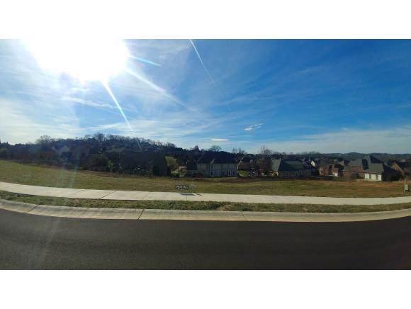 1508 Conestoga Pass, Johnson City, TN 37601 (MLS #428536) :: The Baxter-Milhorn Group