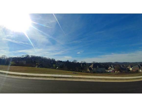 1536 Conestoga Pass, Johnson City, TN 37601 (MLS #428540) :: The Baxter-Milhorn Group