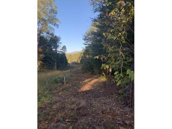 TBD Saylor North Rd, Greeneville, TN 37745 (MLS #428541) :: Bridge Pointe Real Estate