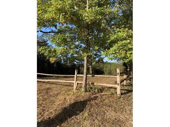 Lt.1 Saylor North Rd, Greeneville, TN 37745 (MLS #428543) :: Bridge Pointe Real Estate