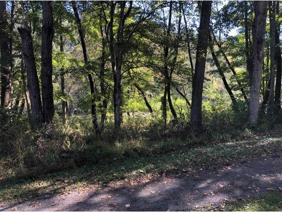 TBD Alvarado Road, Abingdon, VA 24211 (MLS #428545) :: Highlands Realty, Inc.