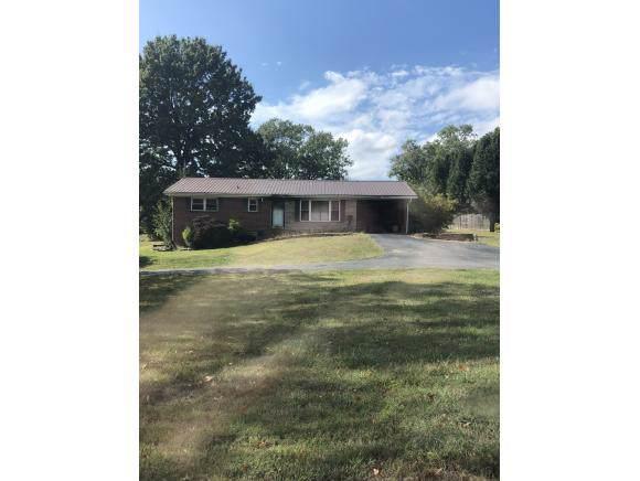 914 Remine Ave, Greeneville, TN 37745 (MLS #428557) :: Bridge Pointe Real Estate