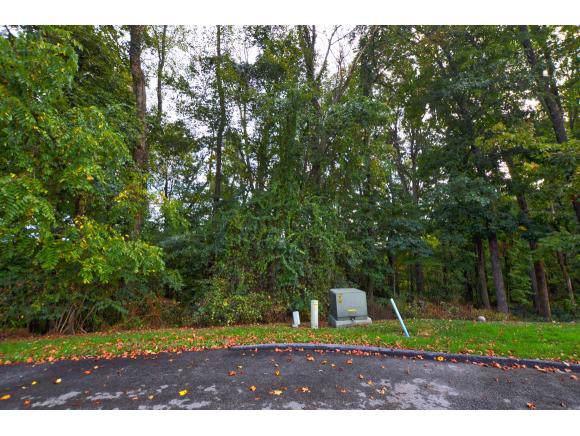 TBD Stonewall Ridge, Bristol, VA 24202 (MLS #428565) :: Highlands Realty, Inc.