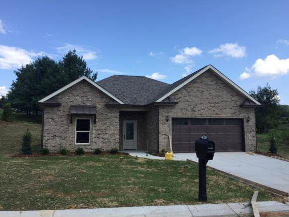 230 Ripple Falls, Gray, TN 37615 (MLS #428583) :: The Baxter-Milhorn Group