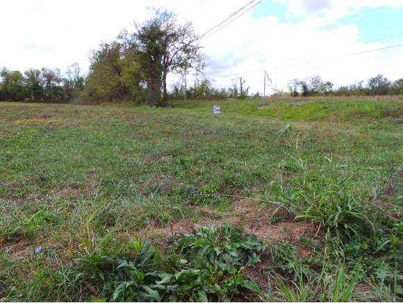 LOT 1 Highway 107/ Eli Masters Road, Jonesborough, TN 37659 (MLS #428614) :: Highlands Realty, Inc.