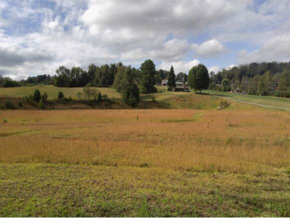 TBD Mountain View Rd, Johnson City, TN 37604 (MLS #428685) :: Bridge Pointe Real Estate