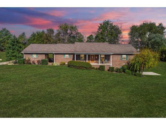 215 Par Lane, Greeneville, TN 37743 (MLS #428690) :: Conservus Real Estate Group