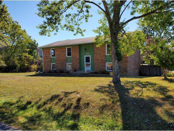 1309 Wakefield Place, Kingsport, TN 37660 (MLS #428712) :: Conservus Real Estate Group