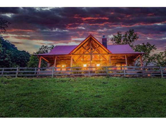360 Bray Road, Surgoinsville, TN 37873 (MLS #428723) :: Conservus Real Estate Group