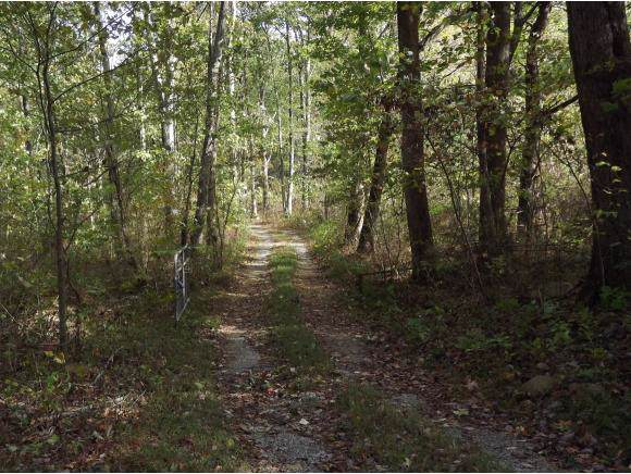 1138 Shelton Mission Road, Greeneville, TN 37743 (MLS #428780) :: Conservus Real Estate Group