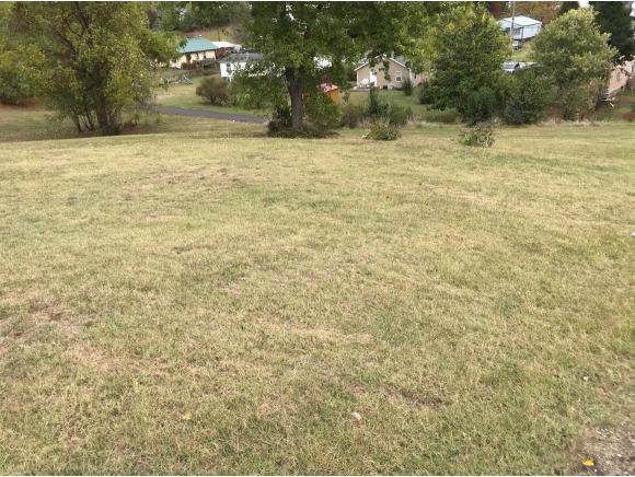 1520 Pendleton St, Kingsport, TN 37660 (MLS #428789) :: Highlands Realty, Inc.