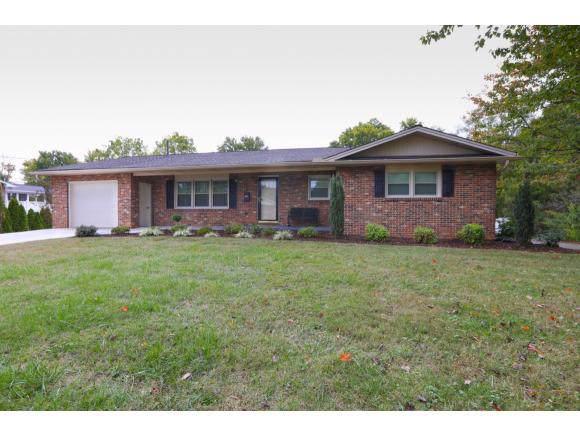 1908 Sundale NE, Johnson City, TN 37604 (MLS #428809) :: Conservus Real Estate Group