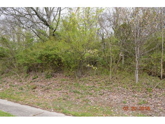 LOT 6&7 Stone West Drive, Kingsport, TN 37660 (MLS #9901949) :: Bridge Pointe Real Estate