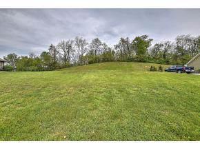 231 Dublin Road, Johnson City, TN 37615 (MLS #9902009) :: Bridge Pointe Real Estate