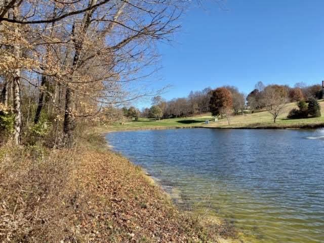 LOT 97 Springview Ridge, Bristol, VA 24202 (MLS #9902208) :: Highlands Realty, Inc.