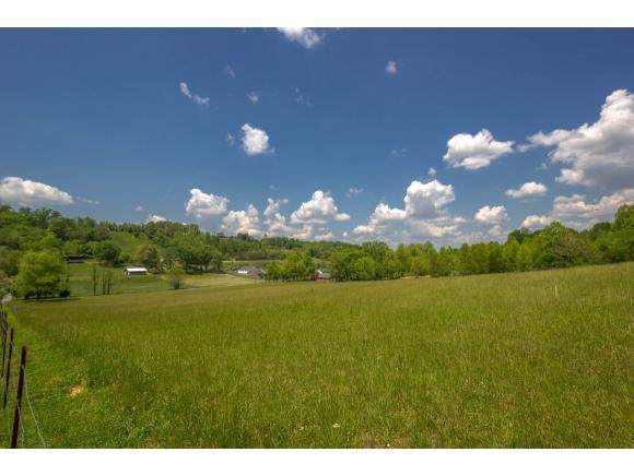 Tbd Carroll Creek Road, Johnson City, TN 37615 (MLS #9902420) :: Conservus Real Estate Group