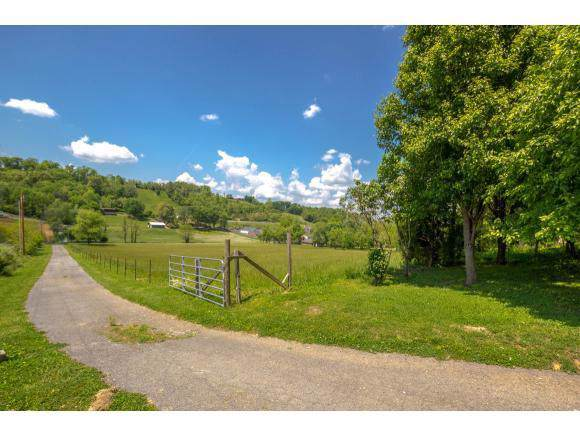 2020 Carroll Creek Road, Johnson City, TN 37615 (MLS #9902421) :: Conservus Real Estate Group