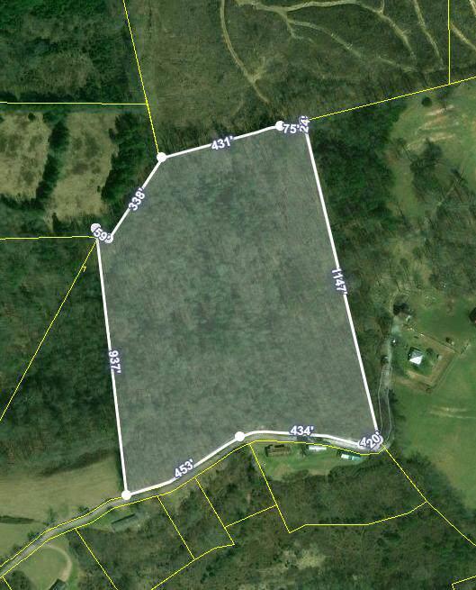 251 Treece Lane, Tazewell, TN 37879 (MLS #9903759) :: Conservus Real Estate Group