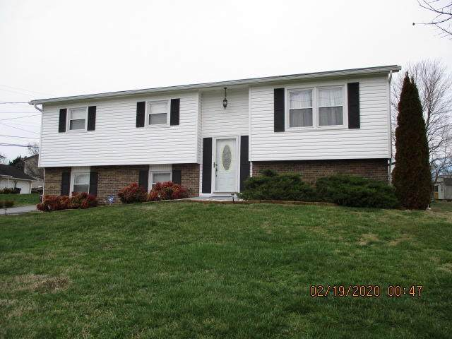 256 Valleyview Street, Gray, TN 37615 (MLS #9904864) :: Conservus Real Estate Group